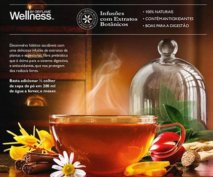 Catálogo Wellness 14-17